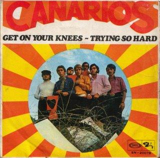canarios_caratula