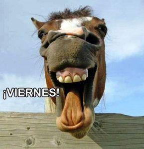 por-fin-viernes-caballo-rsm