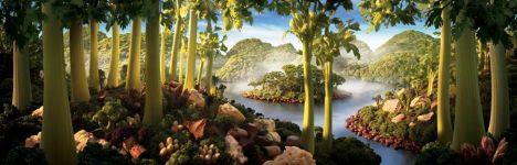 Celery-Island-Wide
