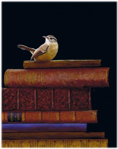 122-books-bird-realism-painting-wren-artist-carolina
