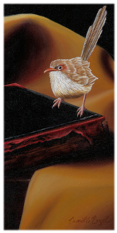 231-Fairy-Wren-Trompe-Loeil-Bird-Painting