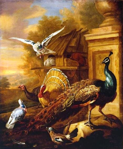 A Peacock and Other Birds in a Landscape circa 1700 Marmaduke Cradock 1660-1717 Purchased 1991 http://www.tate.org.uk/art/work/T06488