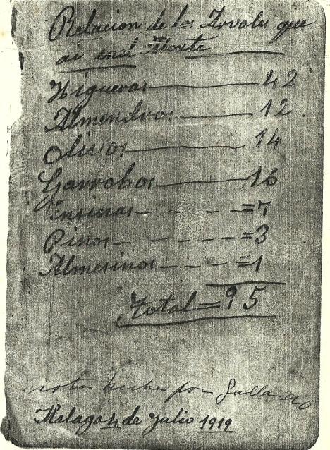 LA CAÑADA-ÁRBOLES 1919-0001