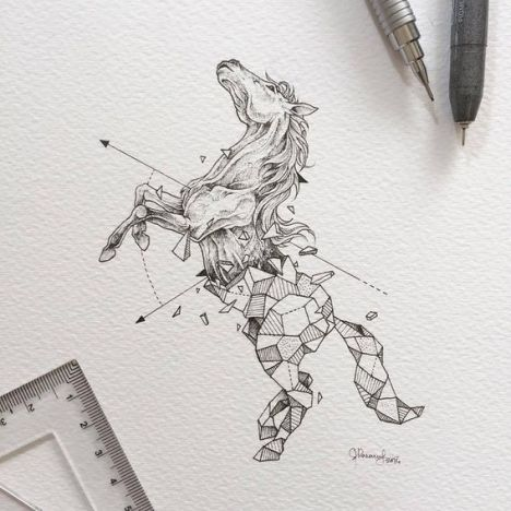 Wild-Animals-Drawings-Fused-With-Geometric-Shapes-by-Kerby-Rosanes-77