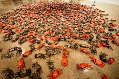 weiwei_crabs.jpg.size.custom.crop.1086x722